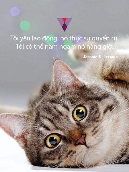 Humor quote-02