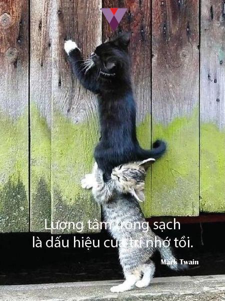 Humor quote-03