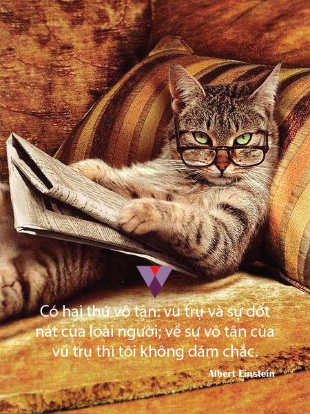 Humor quote-04
