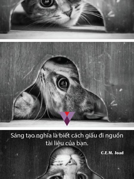 Humor quote-06