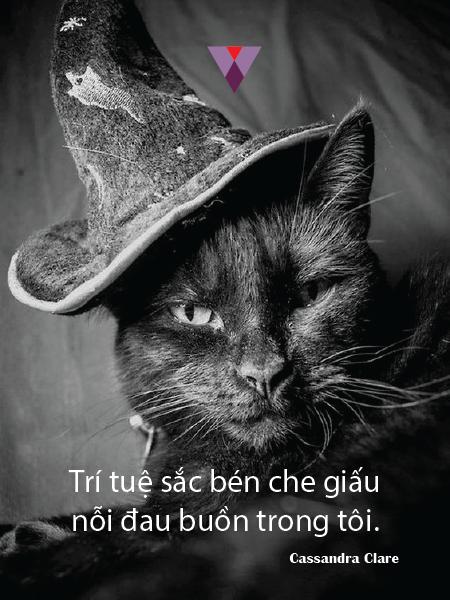 Humor quote-14